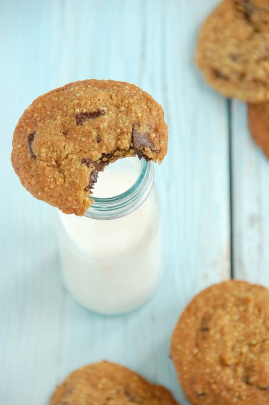 Soft & Chewy Chocolate Chip Cookies {Gluten & Dairy Free ...