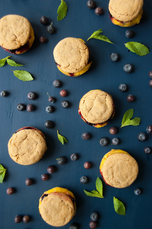 Gingersnap Blueberry Mango Ice Cream Sandwiches | thekitchenmccabe.com