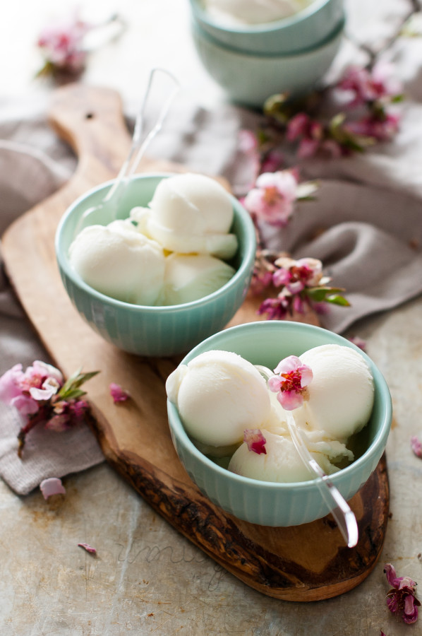 Plain Tart Frozen Yogurt | thekitchenmccabe.com