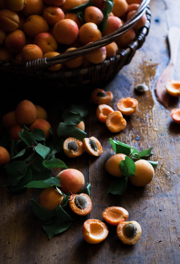Apricot Nectar Recipe & Tutorial