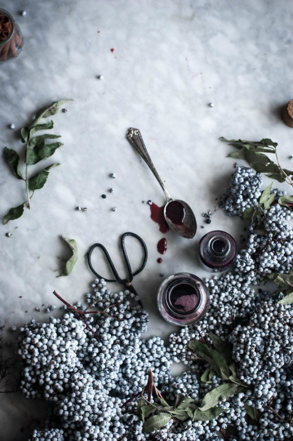 Foraging for Elderberries + Elderberry Syrup